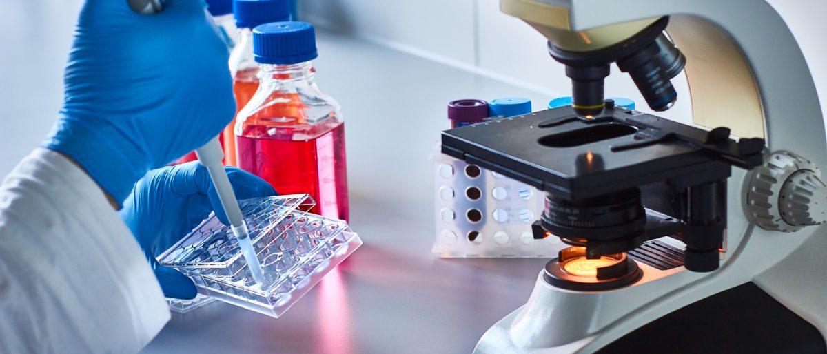 Permalink zu:Labortechnische Analysen